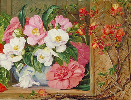 Kew: Marianne North Gallery: Painting 659: Japanese Flowers ...