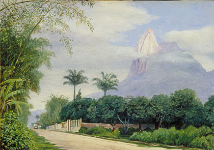 kew marianne north gallery painting 825 view of the