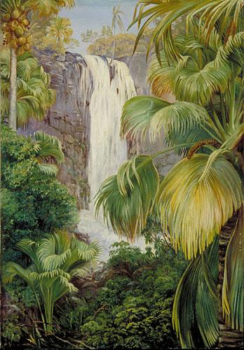 kew marianne north gallery painting 479 waterfall in