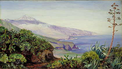 Kew marianne north gallery painting 512 view of the peak of teneriffe - Cuadros tenerife ...