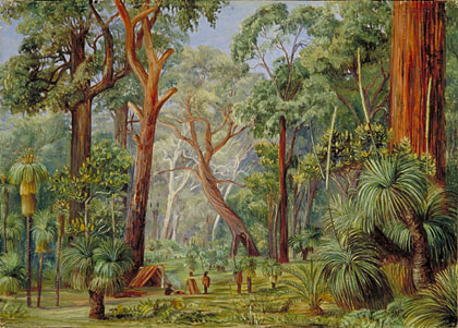 Kew Marianne North Gallery Painting 741 Scene In A West