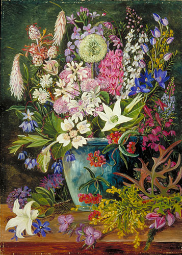 Kew Marianne North Gallery Painting 750 Wild Flowers Of