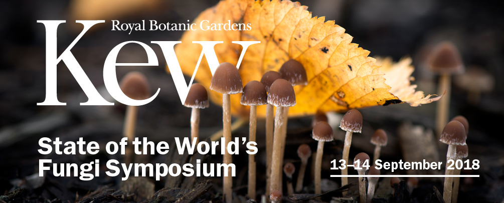 Flyer for Kew's State of the World's Fungi Symposium