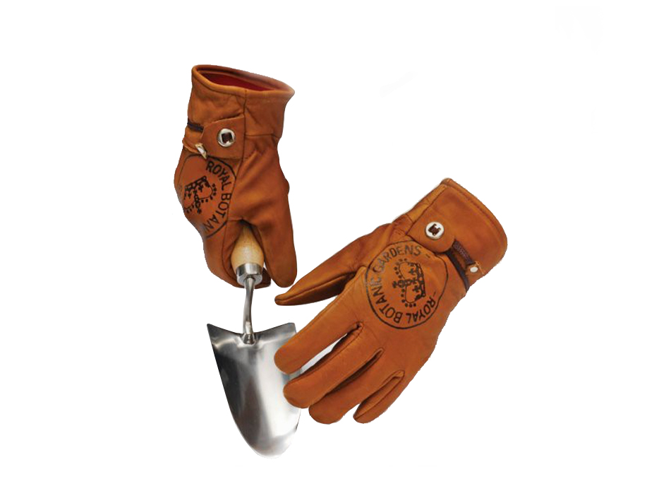 Kew gardening gloves