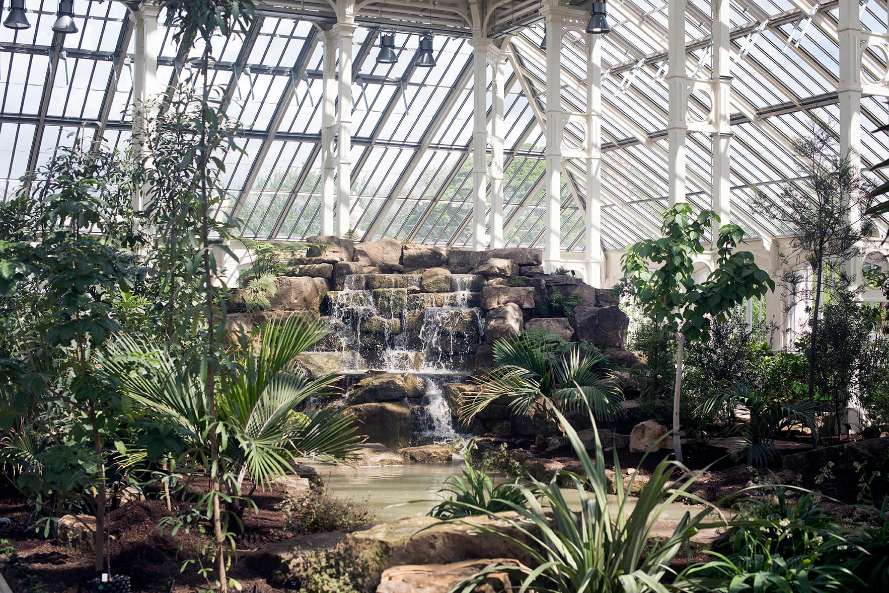 Inside the Temperate House © RBG Kew