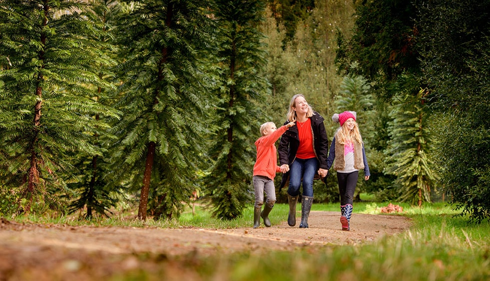 Children explore woodlands of the world