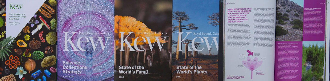 Kew Science reports lined up