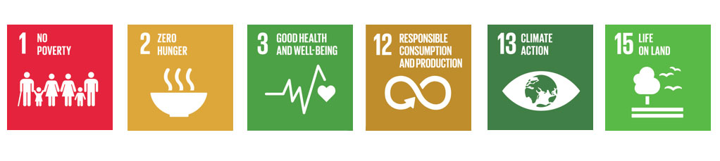 Tiles of the SDGs that Kew contributes to