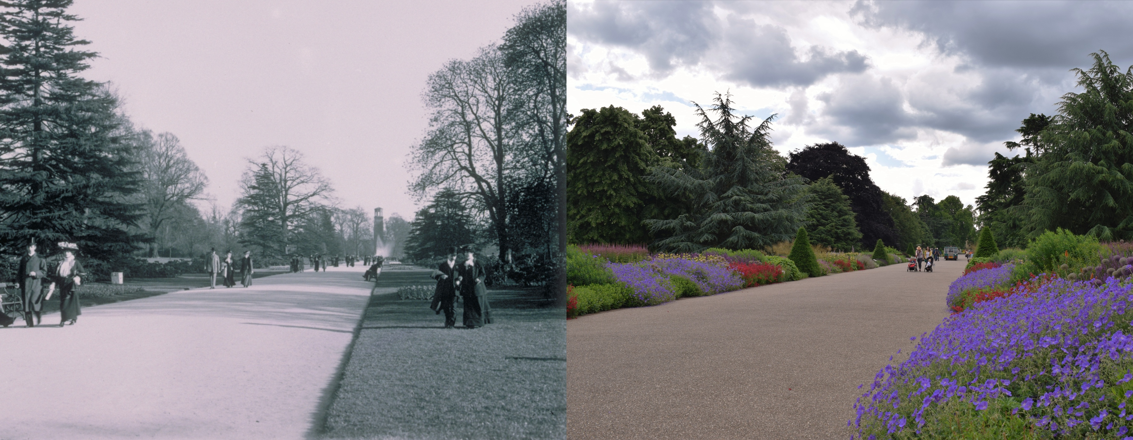 Great Broad Walk then and now