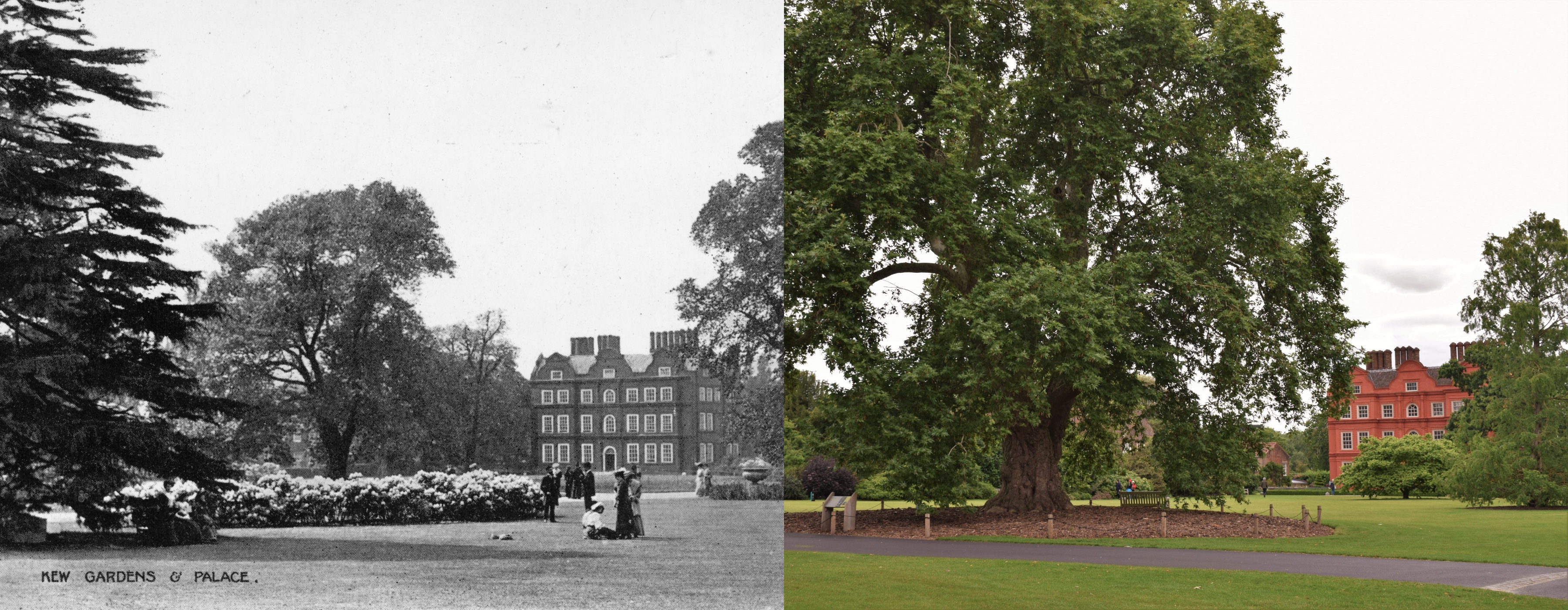 Kew Palace then and now