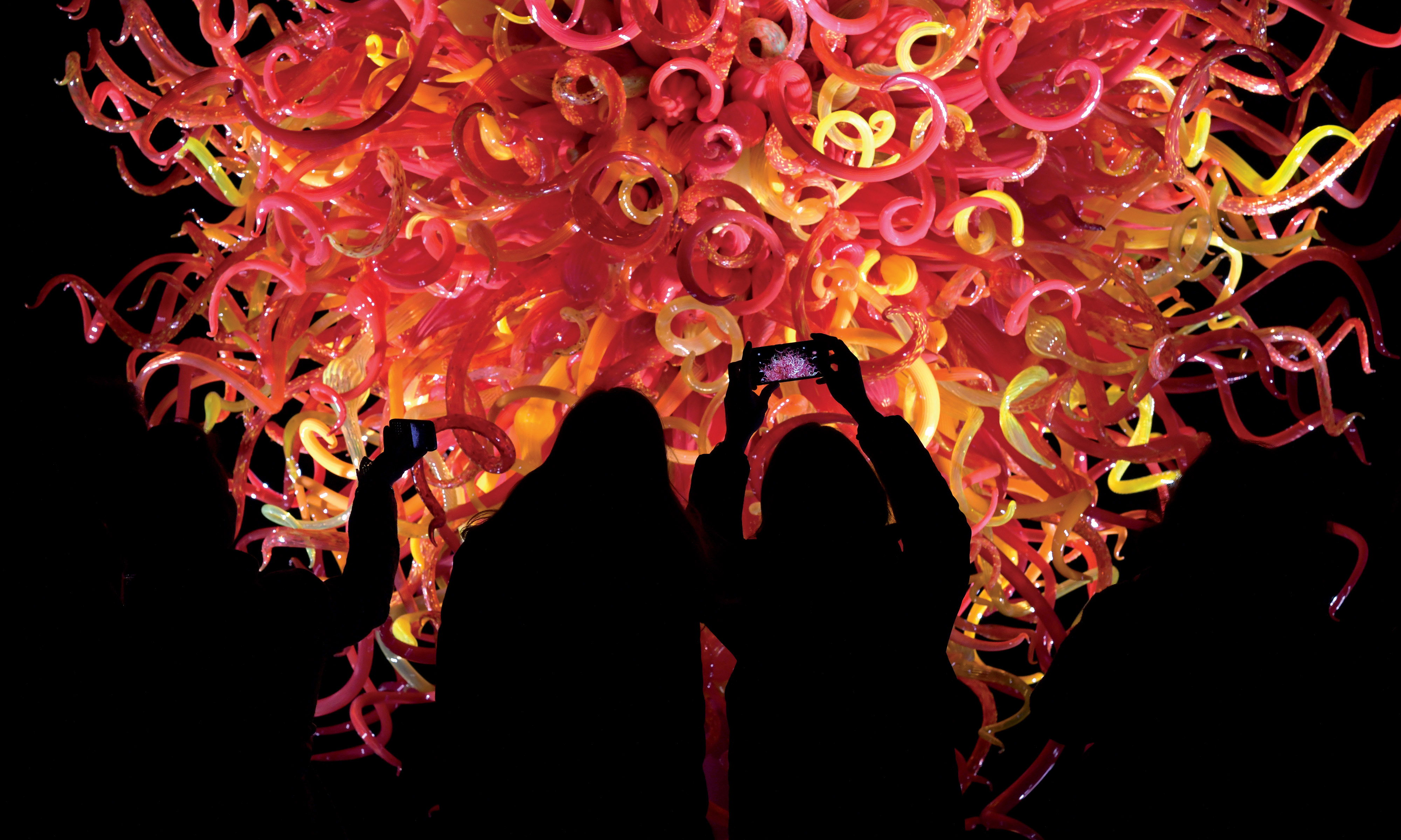 Dale Chihuly's Summer Sun at night