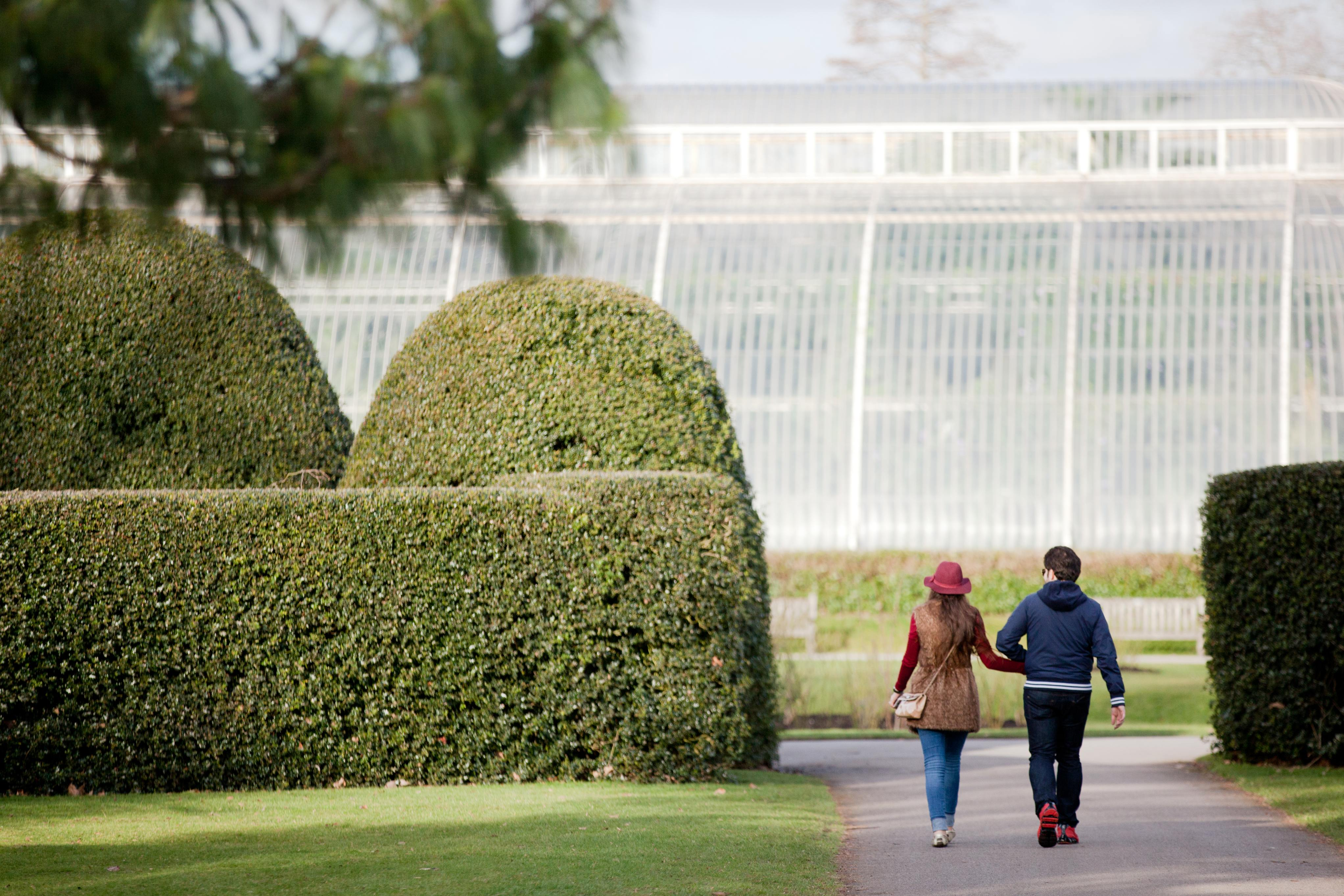 A couple walk towards the Palm House