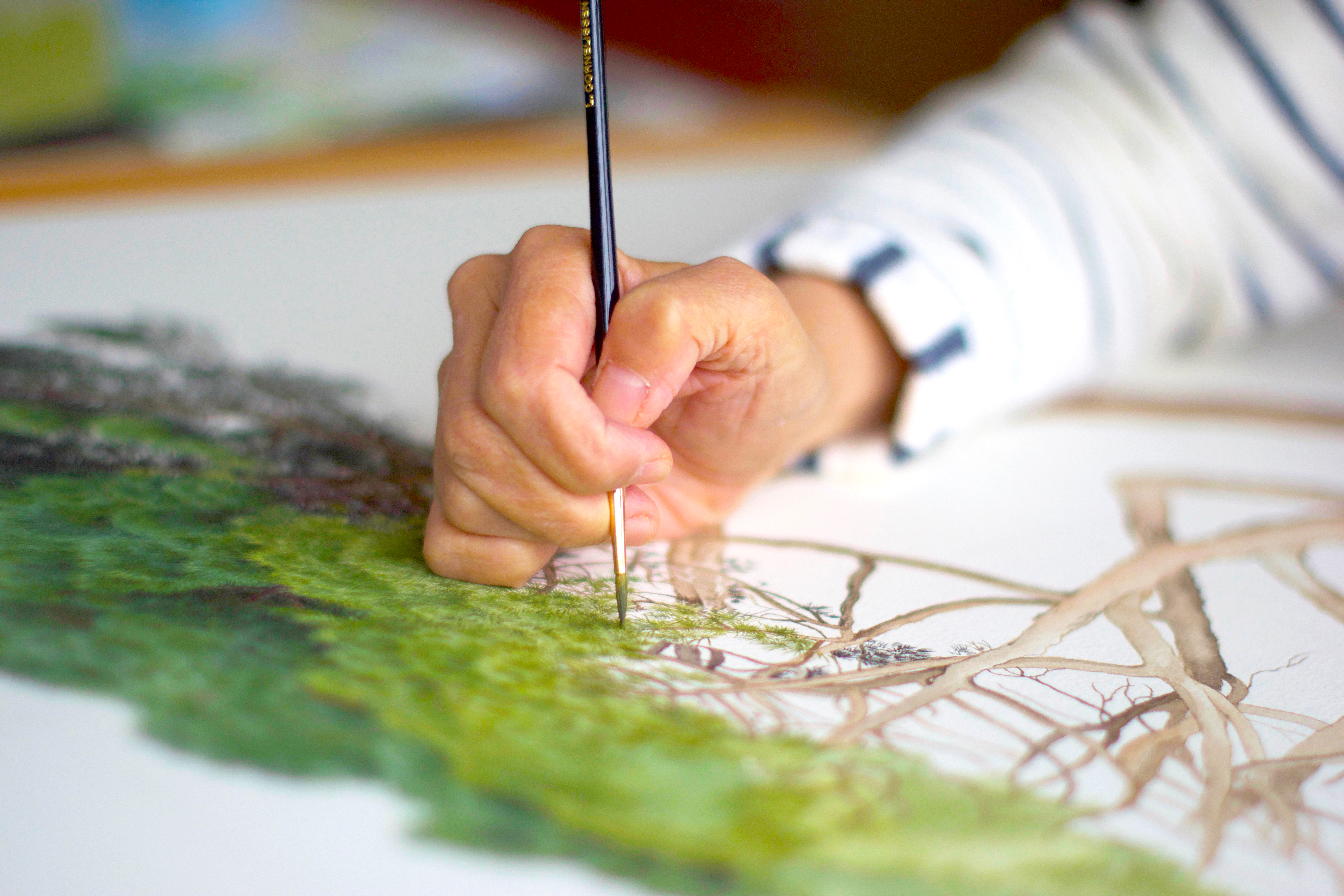 Close-up of botanical artist painting a tree