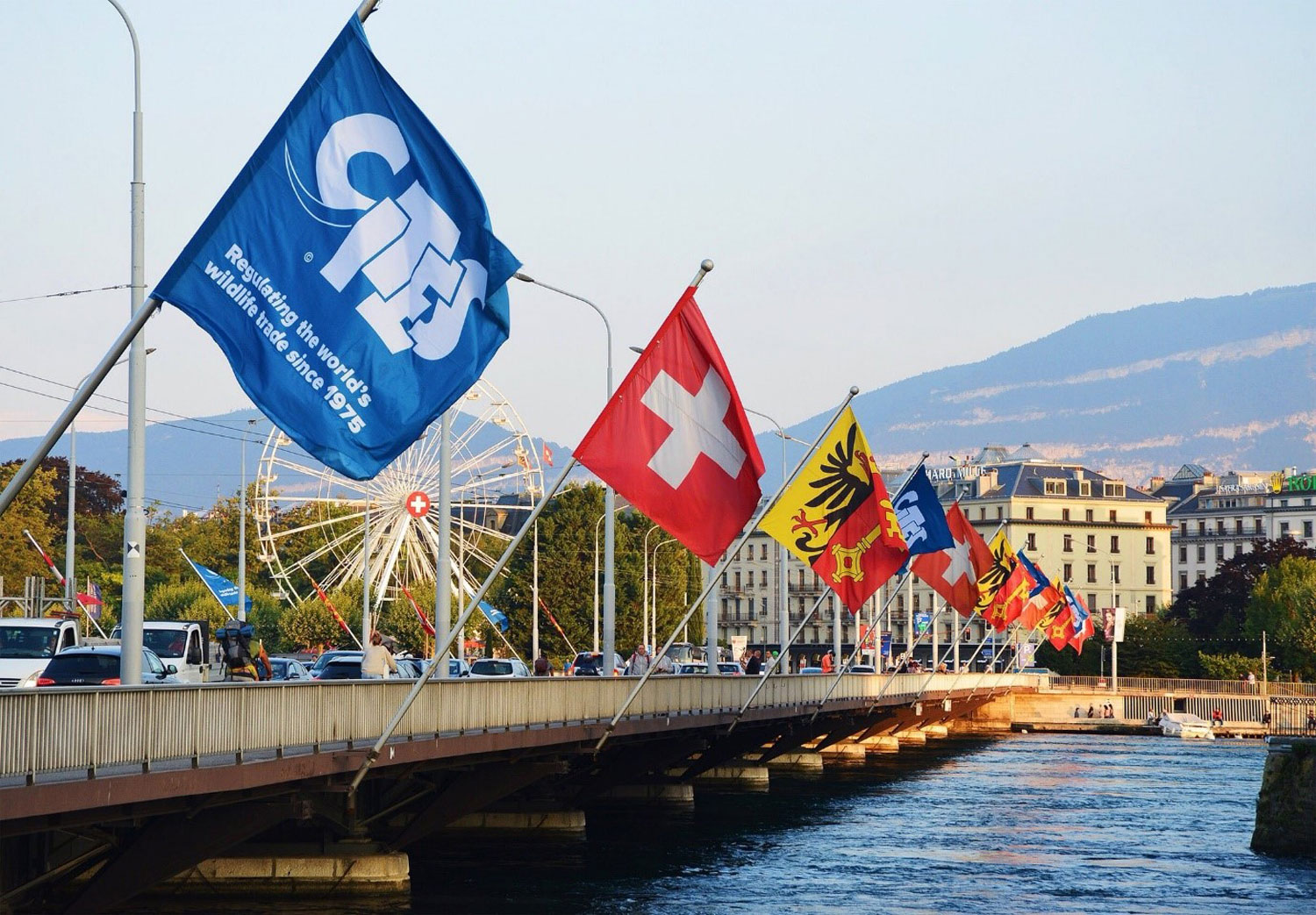 CITES flag in Geneva