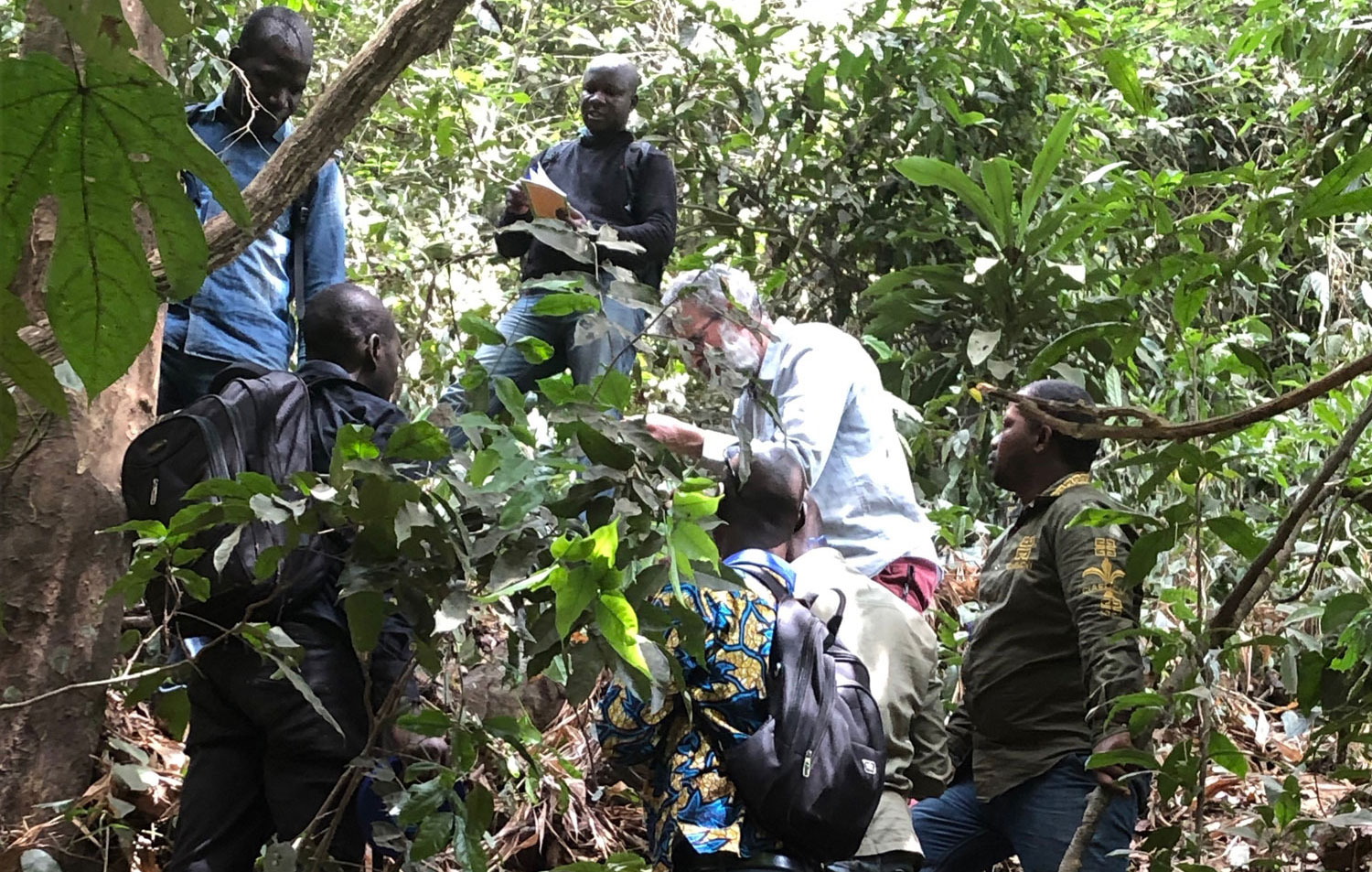 Kew scientists Martin Cheek in the forest with students
