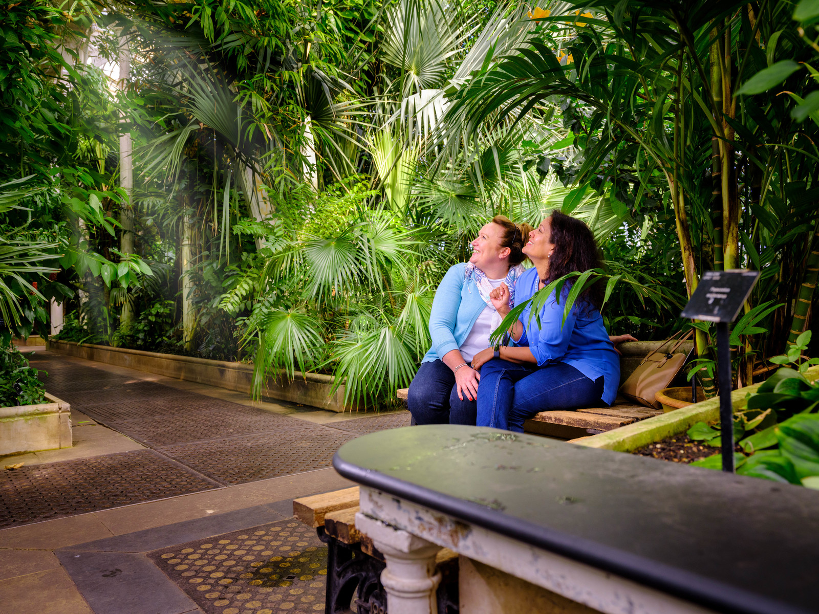 Two women sit on a bench and looking up in admiration at the Palm House display