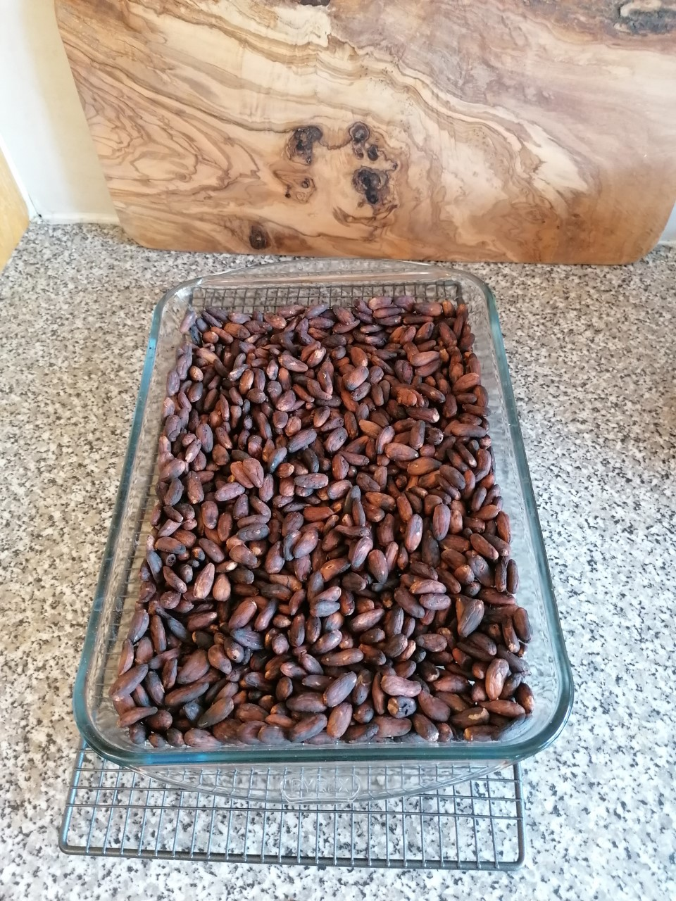 Winnowing cacao