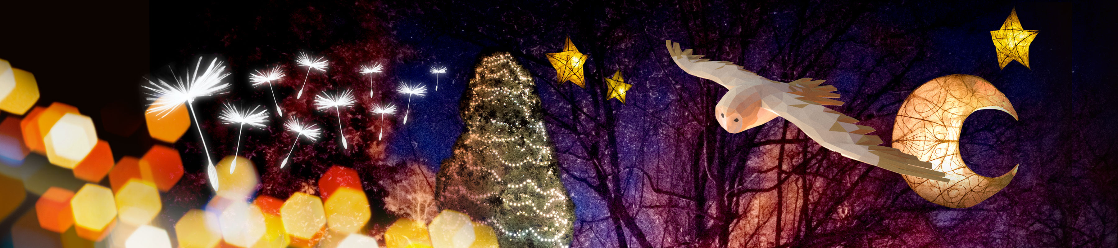 Dandelion seeds, majestic owl, star lanterns and the UK's tallest Christmas tree