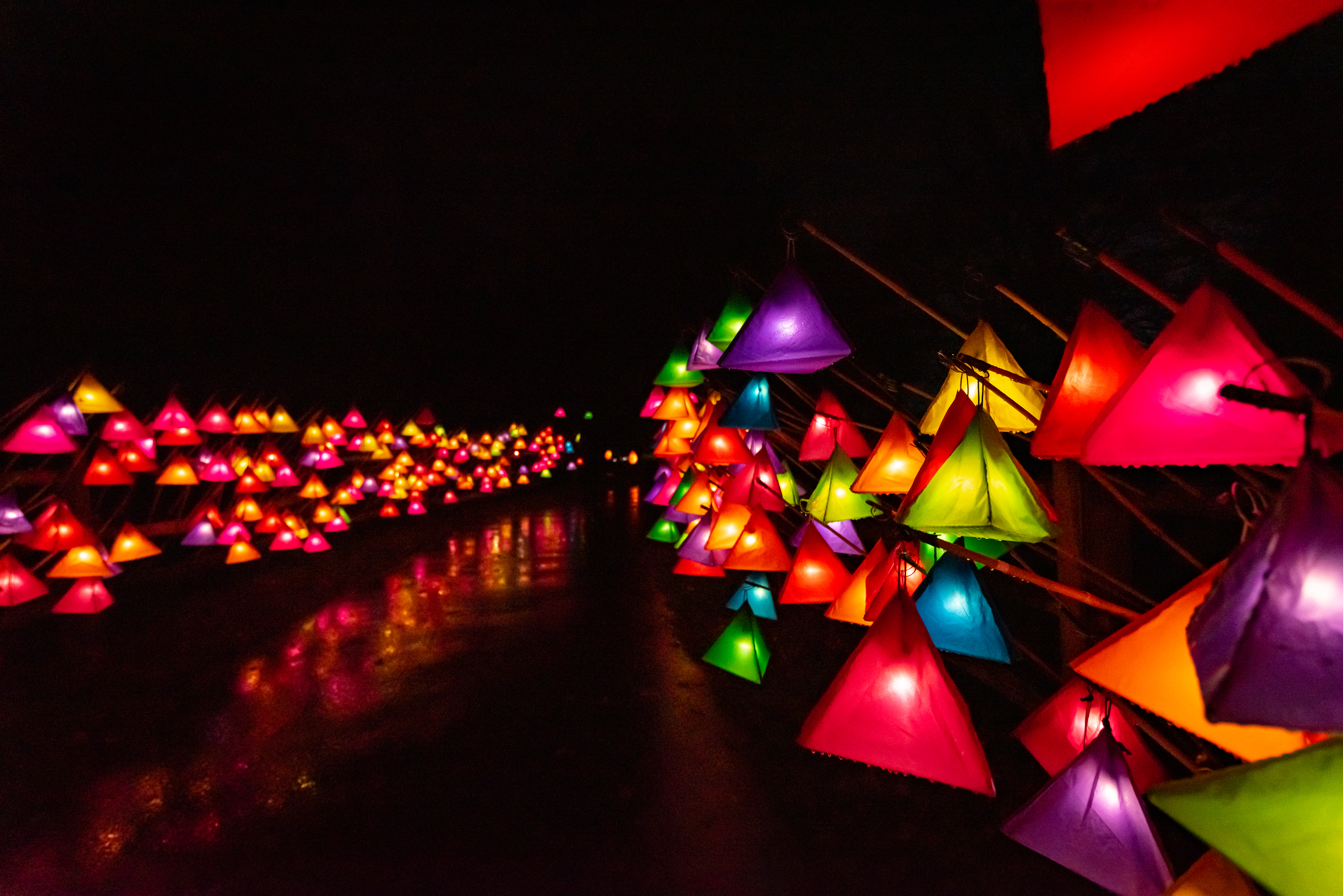 Multi-colour lanterns at Glow Wild