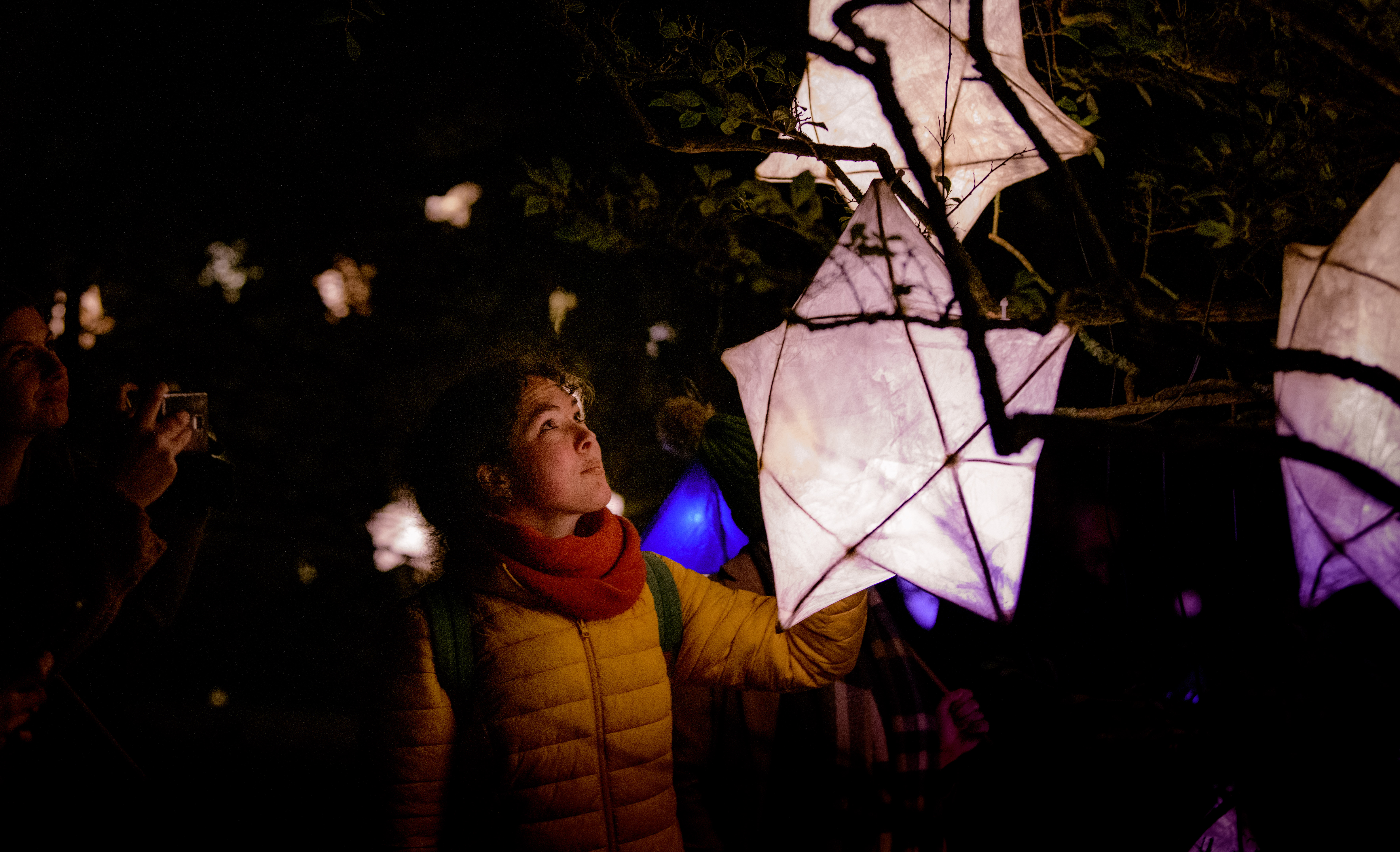 Star lanterns at Glow Wild