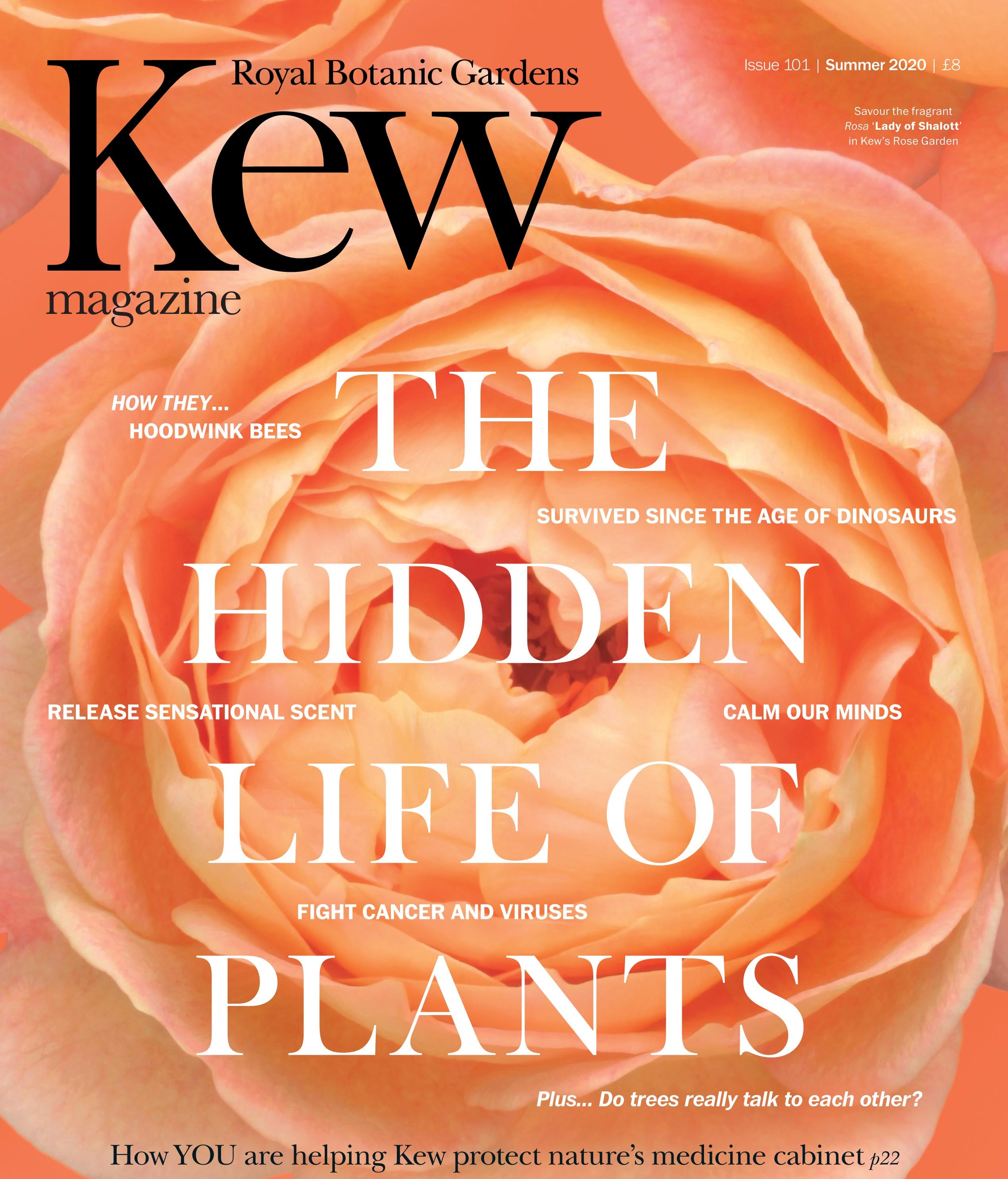 Kew Magazine Summer 2020