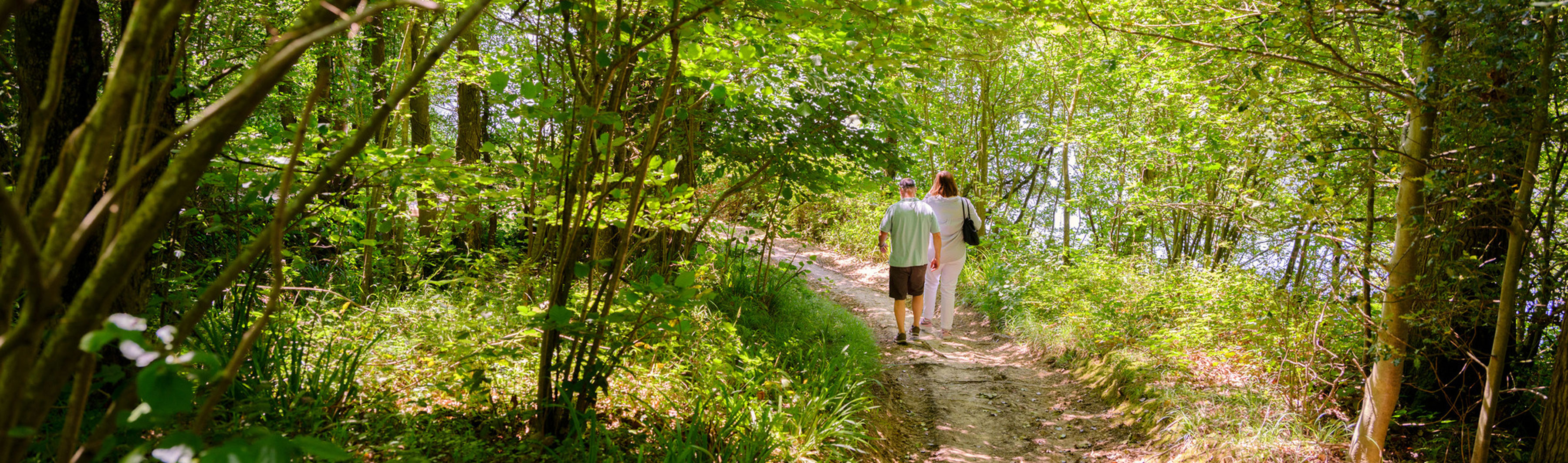Two people walking in the Wakehurst woodland