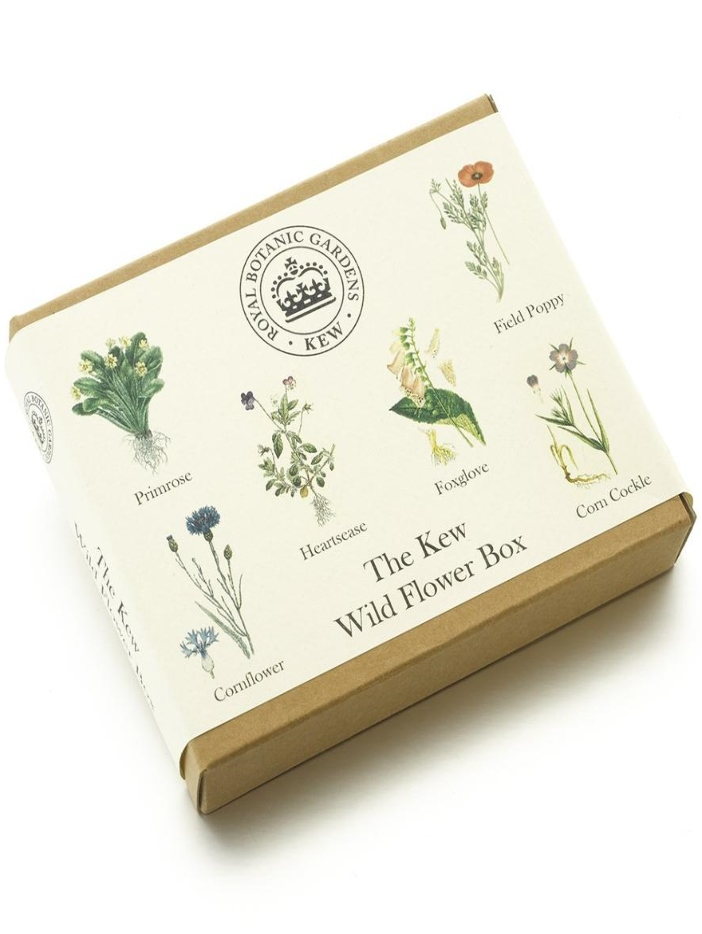 Wildflower box
