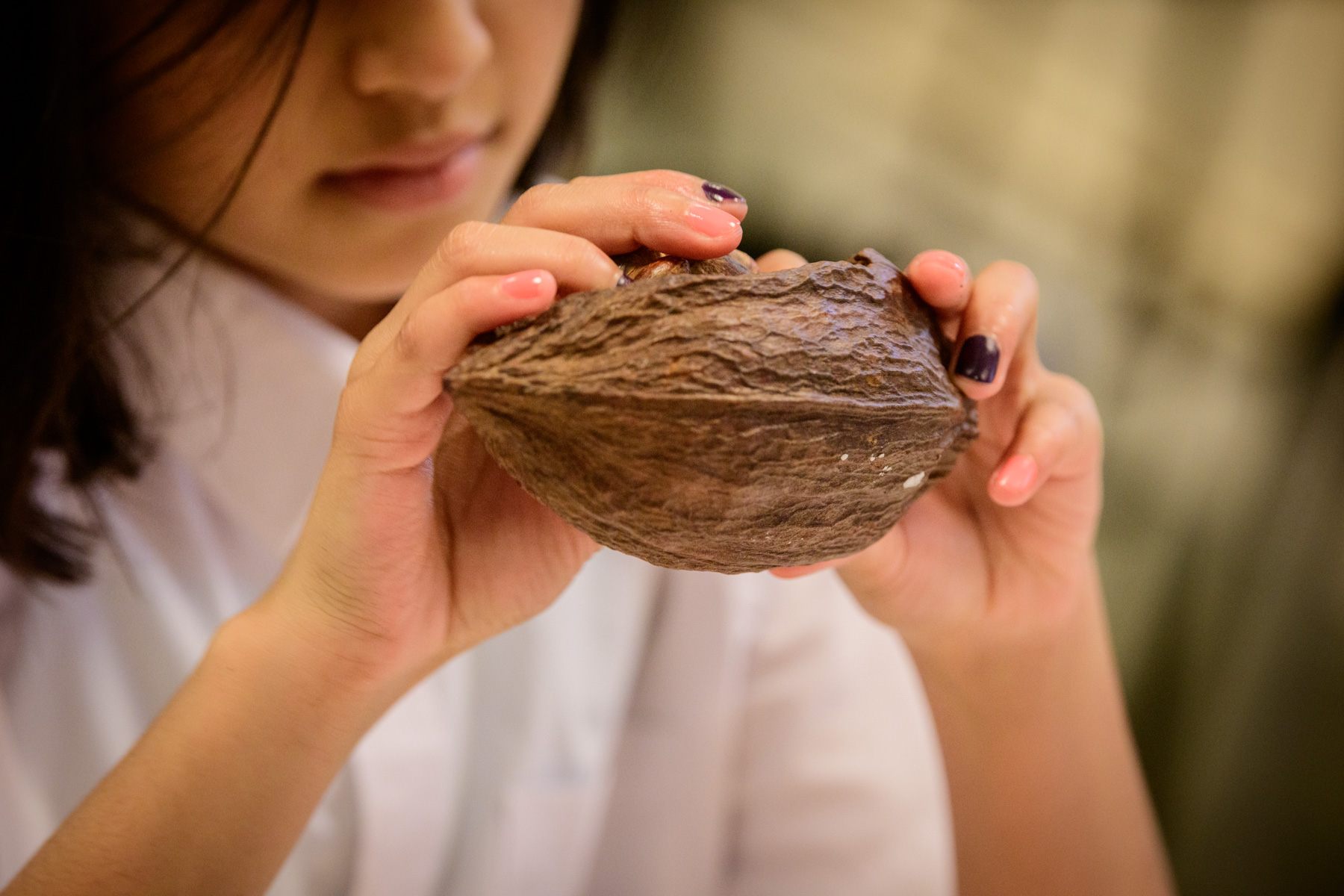 School pupil examining a seed on a Wakehurst school visit