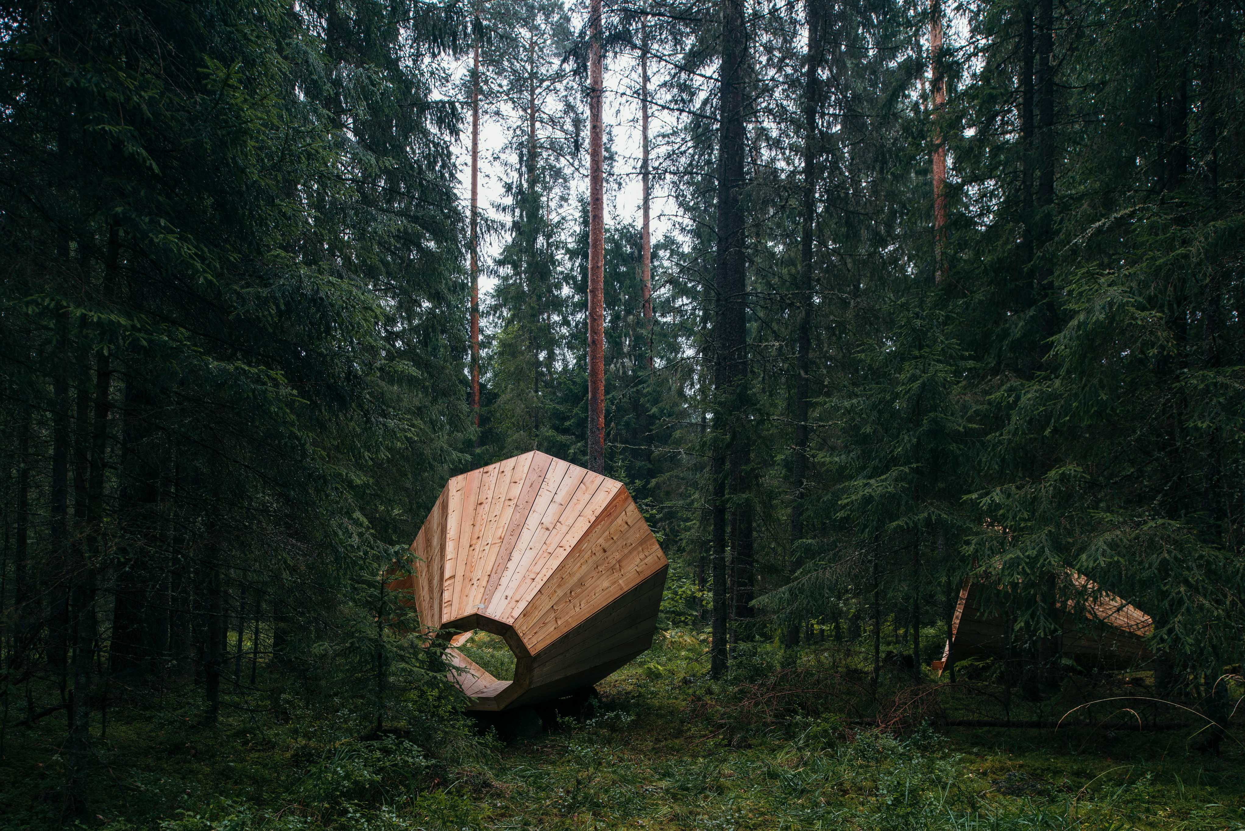 A giant wooden megaphone installation in the forest
