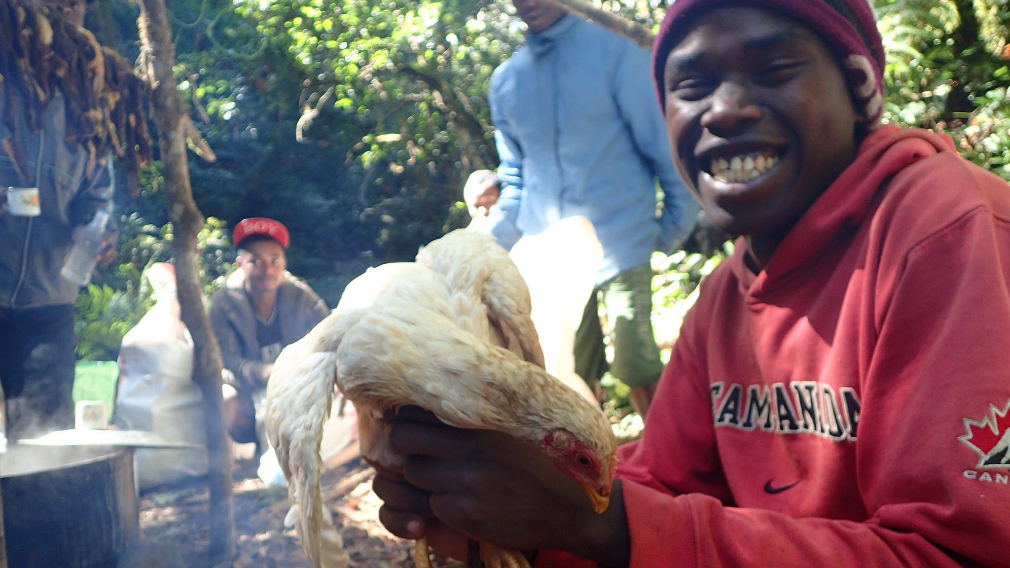 Image showing Naivo with the white chicken to be sacrificed at Maromokotro: these are available for sale in Mangaindrano village to anyone attempting to reach the peak