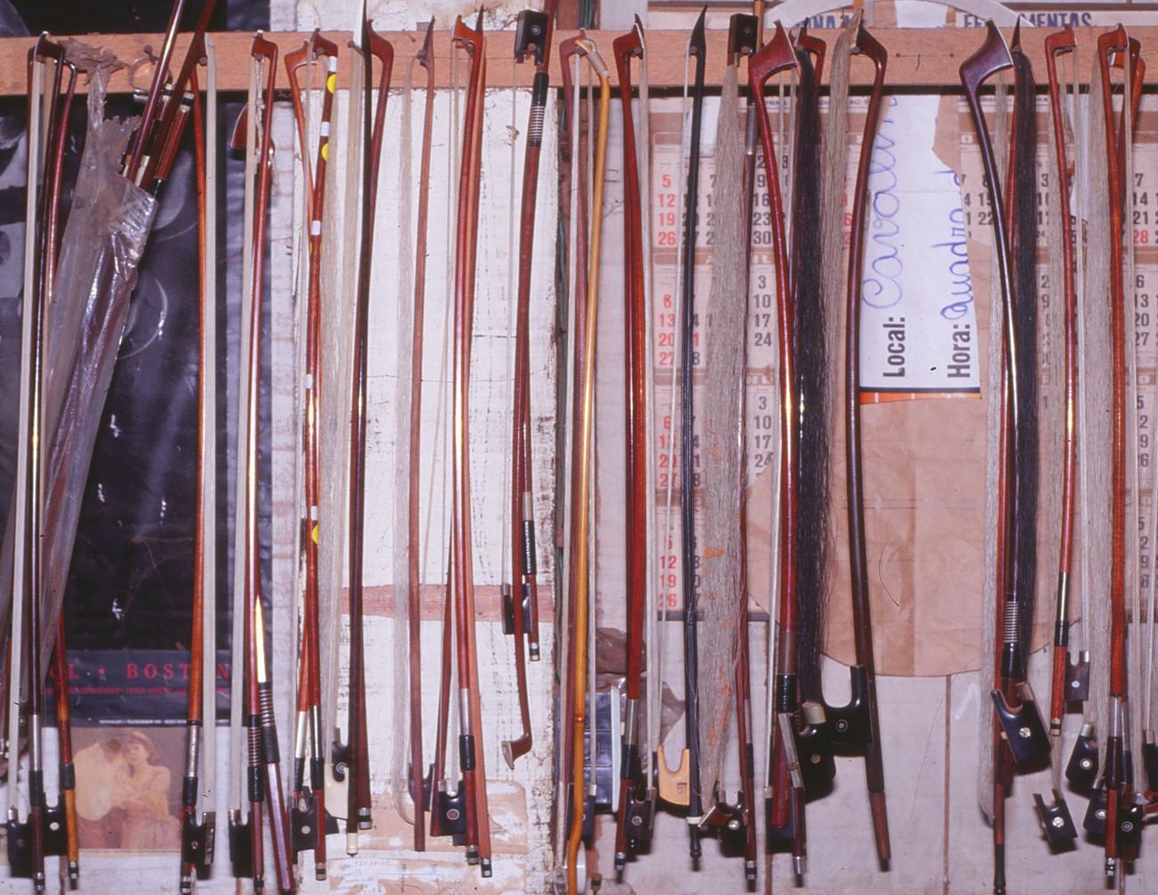 Antique violin bows made from Paubrasilia echinata (Image: G.P. Lewis)