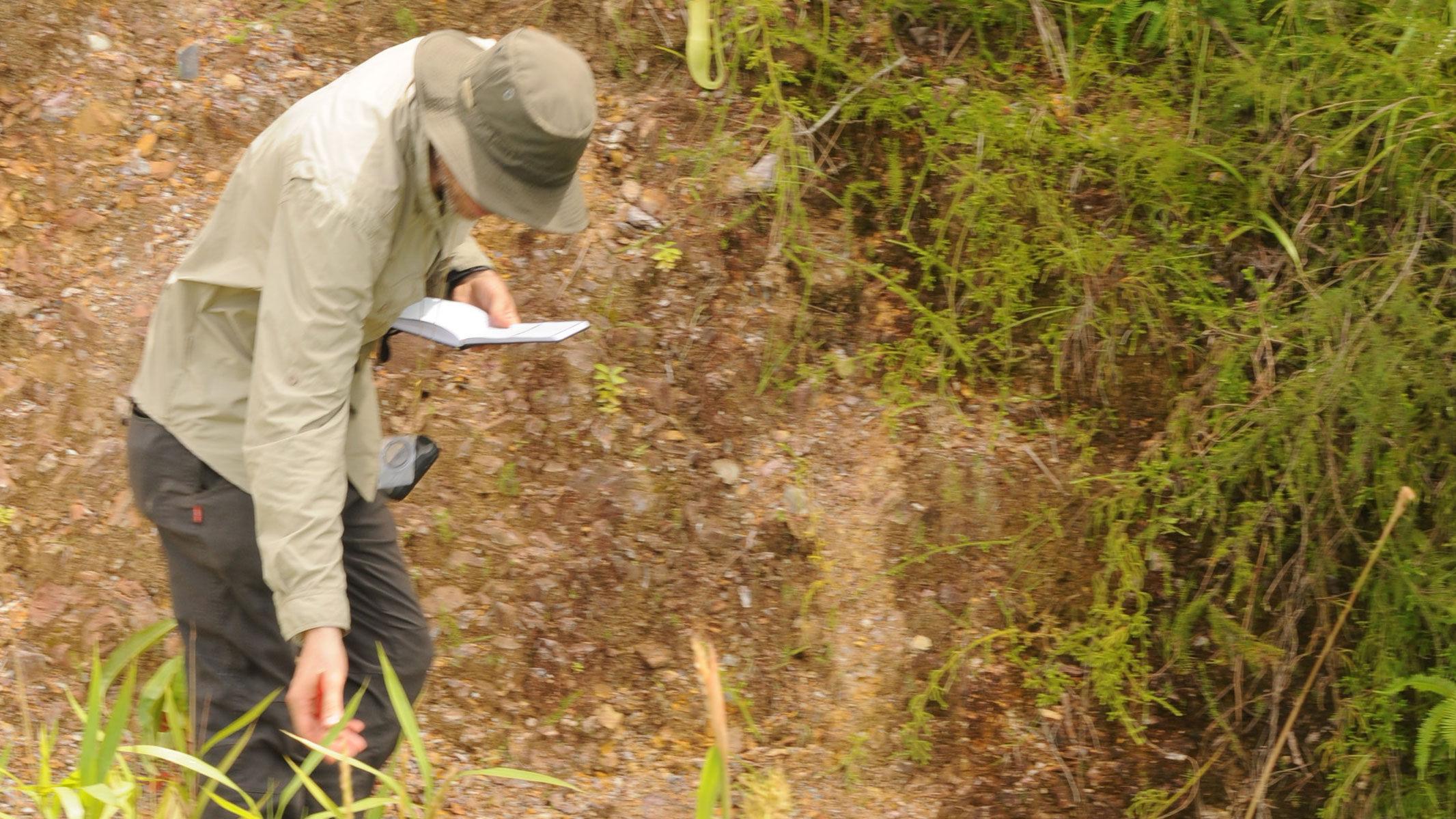 Image showing Bruce Murphy collecting Nepenthes for research at Botak.