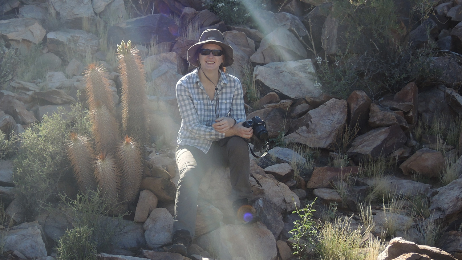 South Africa: Collecting succulents in the Richtersveld desert (image supplied by Dr Olwen Grace)