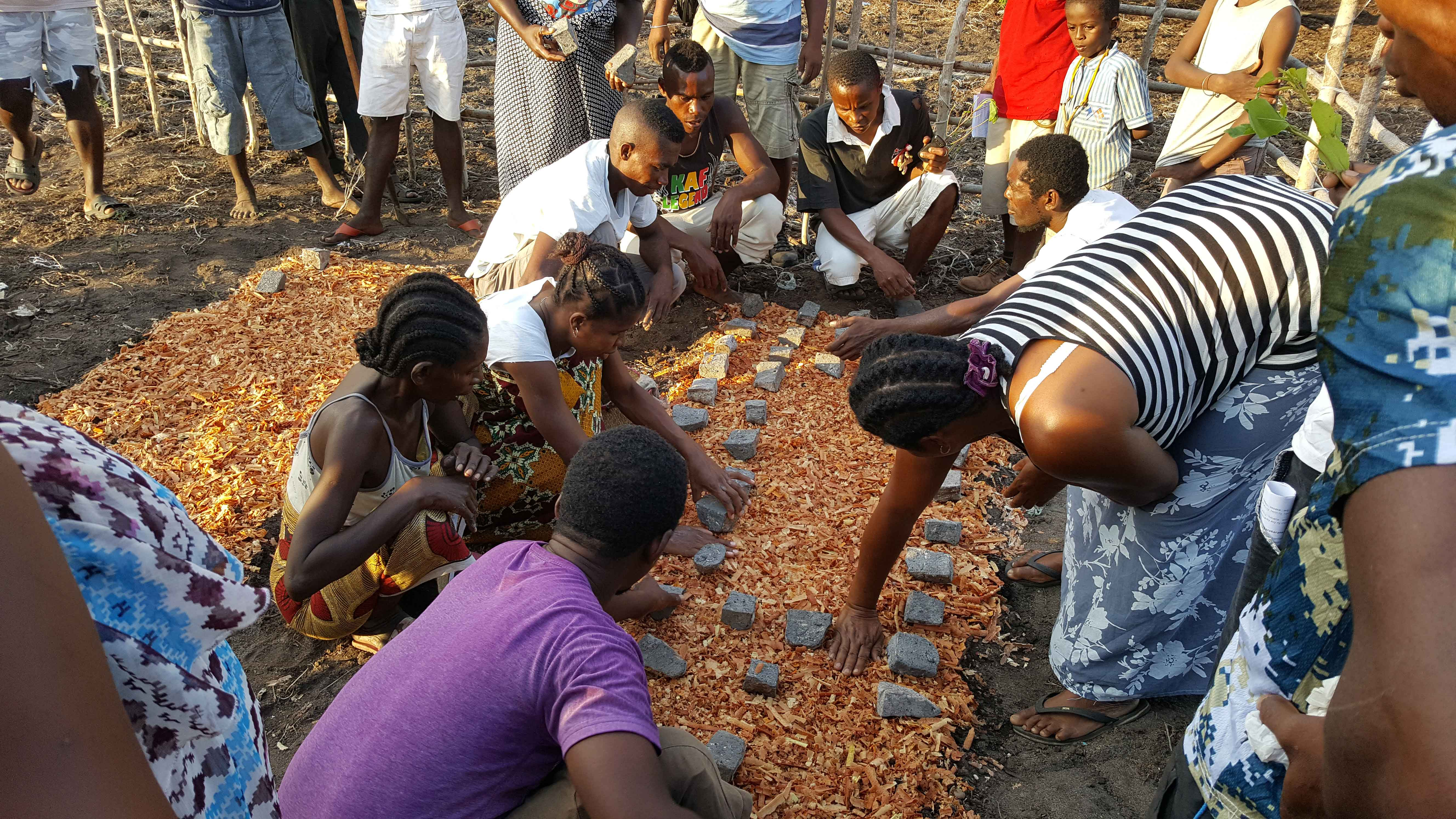 Community training in yam propagation from tubers at Ivovona in northern Madagascar (photo: Feno Rakotoarison).