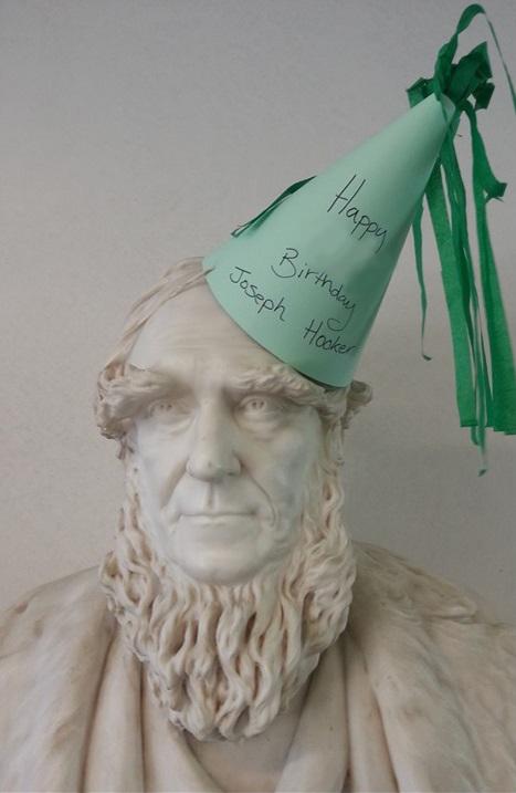 Joseph Hooker in Birthday Hat