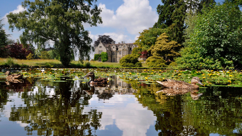 Mansion Pond at Wakehurst