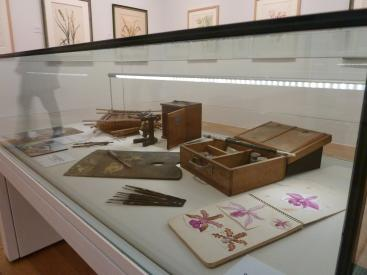 Showcase displaying Margaret Mee's paint box, brushes, microscope, and baskets