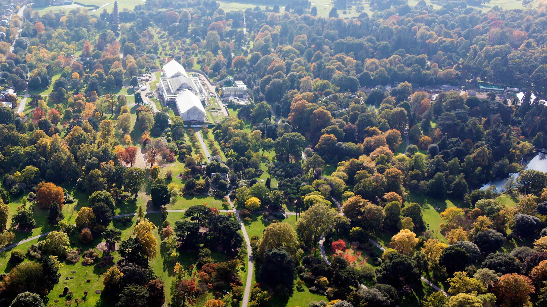 Aerial view of Kew Gardens