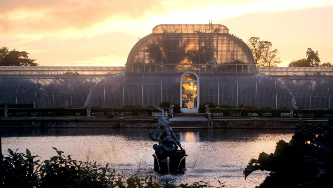 The Palm House at sunset
