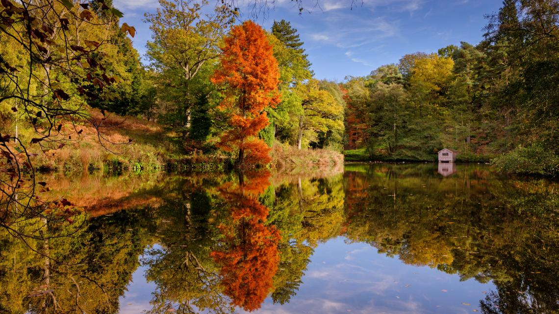 Westwood Lake at Wakehurst in autumn
