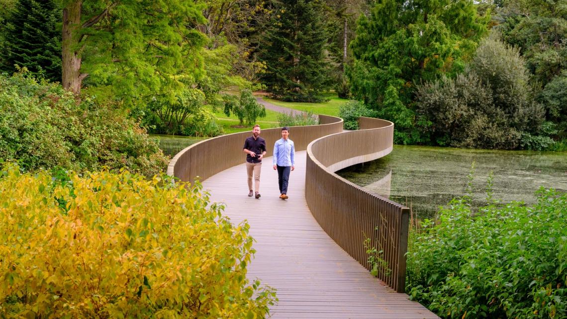 Visitors walk over the Sackler crossing