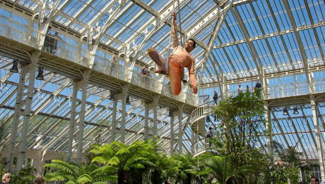 Cirque Bijou's Korri Singh-Aulakh in the Temperate House