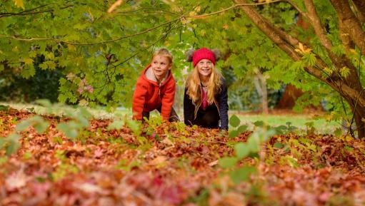 Children playing at Wakehurst in autumn