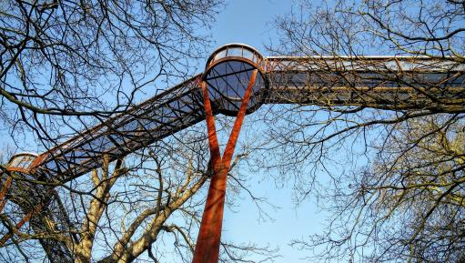 The Treetop Walkway in winter