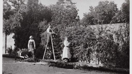Photo of women gardeners in 1915