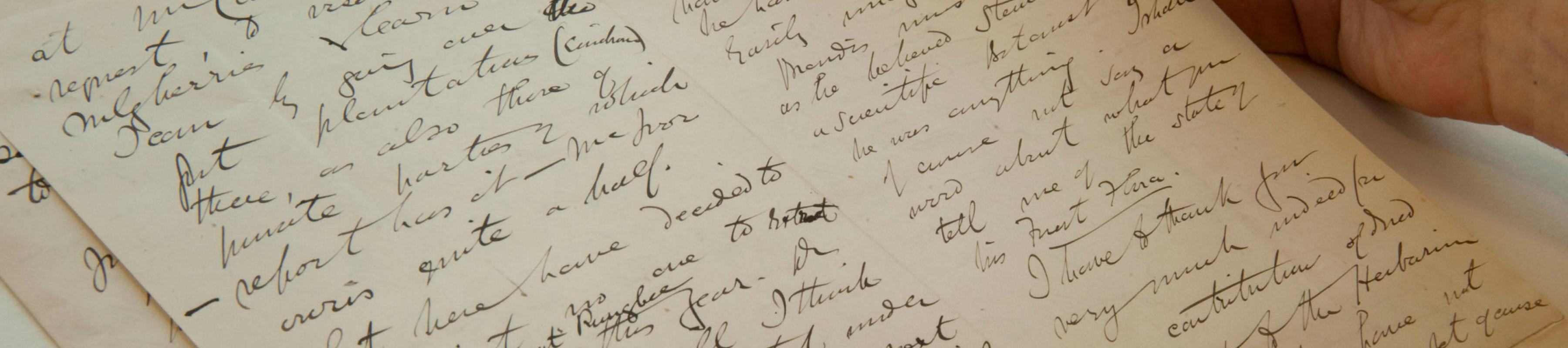 Letter from Kew's Archive