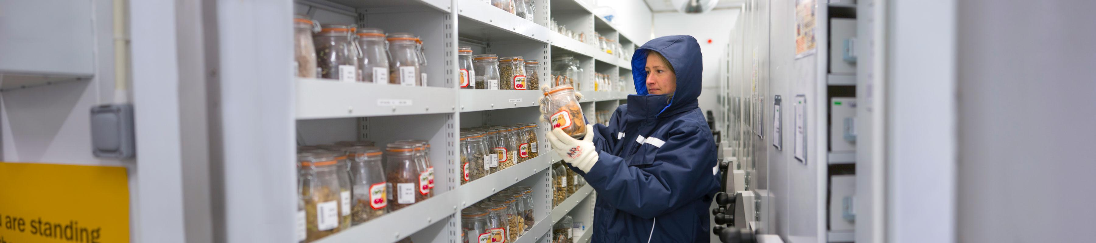 Researcher wearing large protective coat, holding jar of seeds, in the vault of the Millennium Seed Bank