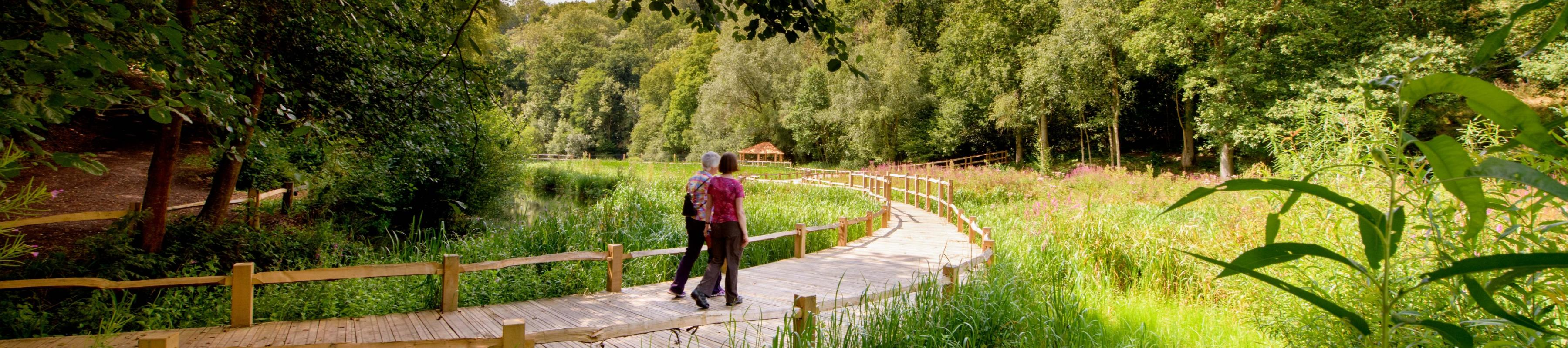 Wakehurst Boardwalks © RBG Kew/Jim Holden
