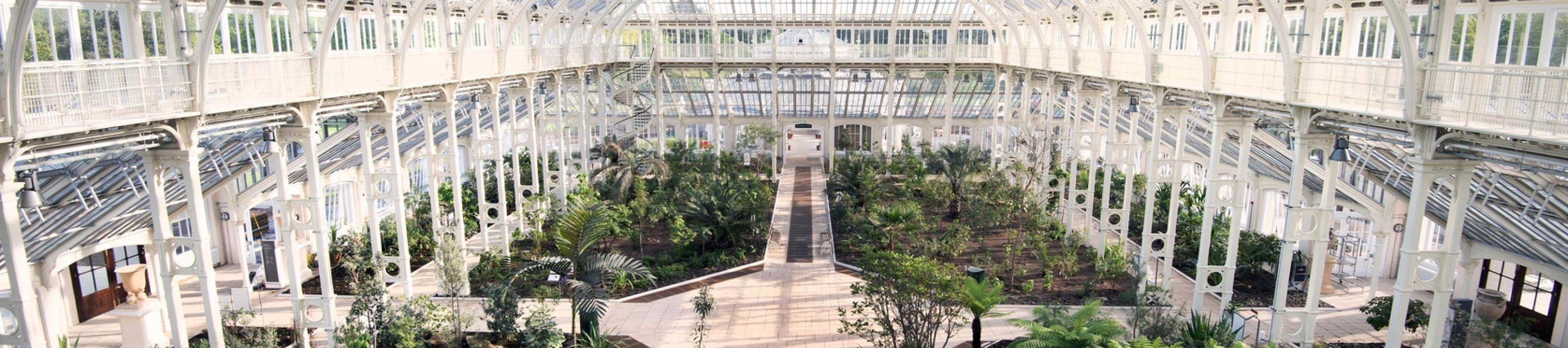 A wide shot taking in the whole Temperate House from above