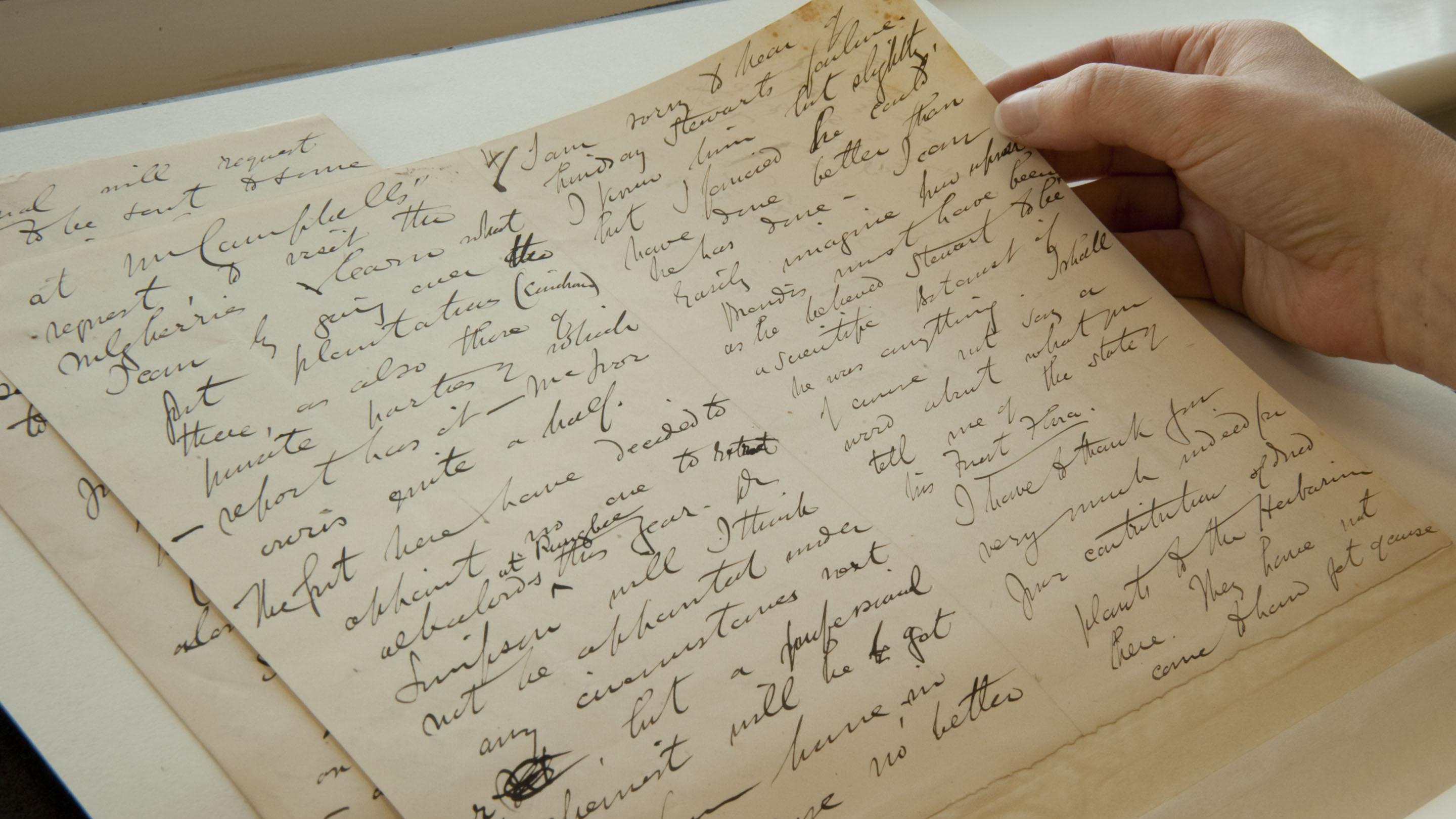 Letter from Kew's Archives